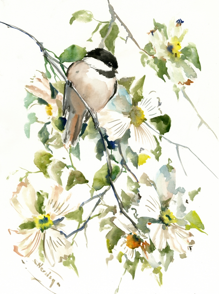 Chickadee And Dogwood Flowers